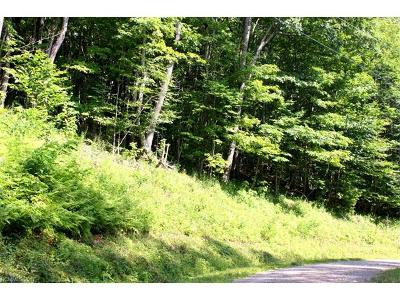 Residential Lots & Land For Sale: 331 Hamlin Lane #331