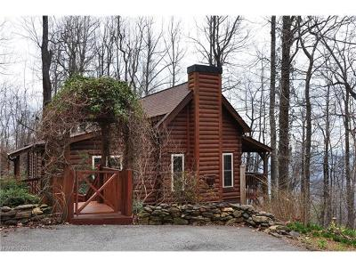 Columbus Single Family Home For Sale: 3075 Skyuka Mountain Road