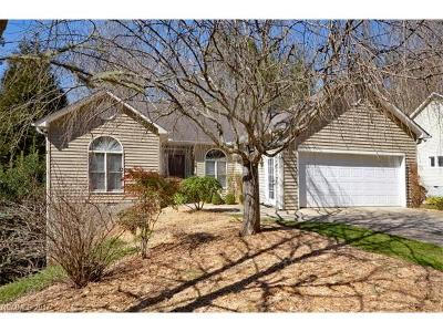 Transylvania County Single Family Home For Sale: 19 Summer Place Court