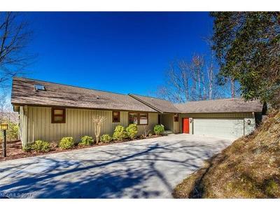 Transylvania County Single Family Home For Sale: 59 Agaliha Lane