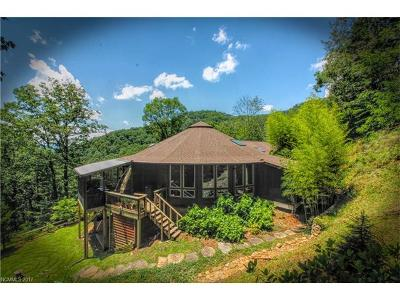 Weaverville Single Family Home For Sale: 76 Hawkes Point Lane