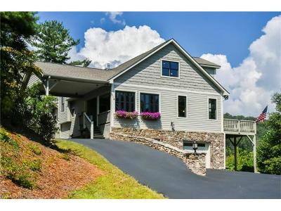 Black Mountain Single Family Home For Sale: 314 Chapel Road #3