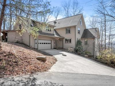 Asheville Single Family Home For Sale: 116 Hawk Ridge