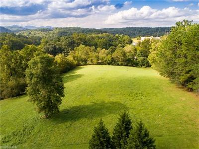Arden NC Residential Lots & Land For Sale: $3,400,000