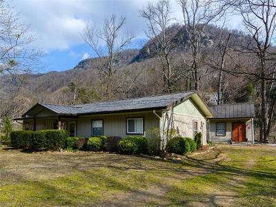 Chimney Rock Single Family Home For Sale: 249 Southside Drive