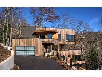 Asheville Single Family Home For Sale: 565 Elk Mountain Scenic Highway