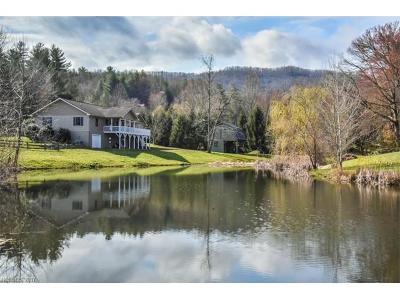 Boyd, Little River, Penrose, Pisgah Forest Single Family Home For Sale: 72 Silver Fox Lane