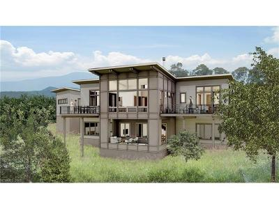 Asheville NC Single Family Home For Sale: $984,671