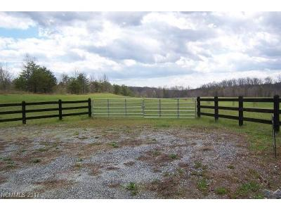 Mill Spring Residential Lots & Land For Sale: Big Level Road #13
