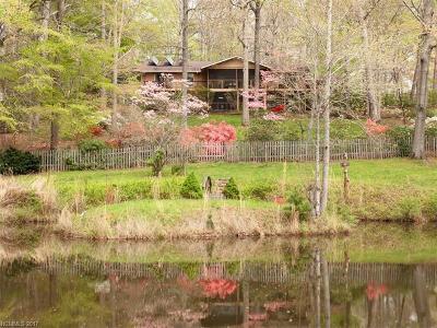 Asheville Single Family Home For Sale: 2349 Riceville Road