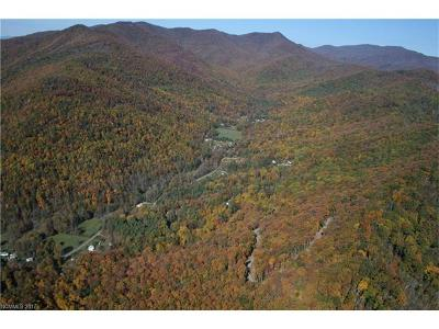 Asheville NC Residential Lots & Land For Sale: $98,500