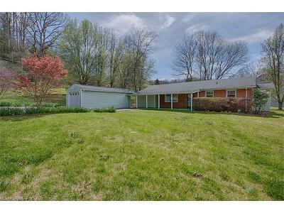 Waynesville Single Family Home For Sale: 194 Holston Village Road