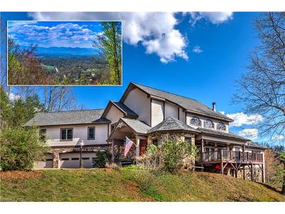 Weaverville Single Family Home For Sale: 420 Dula Springs Road