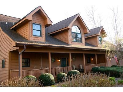Transylvania County Single Family Home For Sale: 338 Winding Creek Road #8