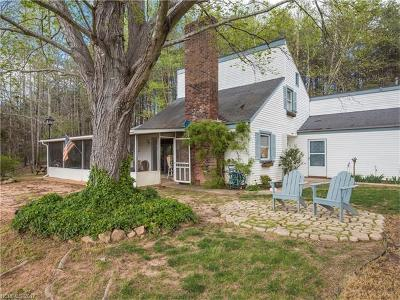 Tryon Single Family Home For Sale: 689 John Shehan Road