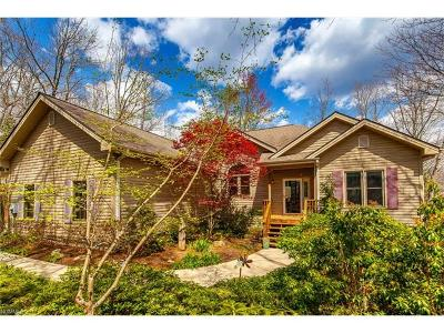 Transylvania County Single Family Home For Sale: 84 Usdasdi Drive