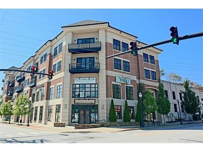 Brevard Condo/Townhouse For Sale: 29 French Broad Street #318