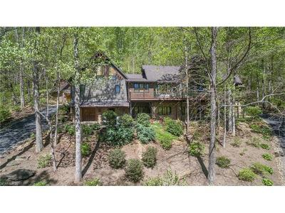Black Mountain Single Family Home For Sale: 62 Great Aspen Way