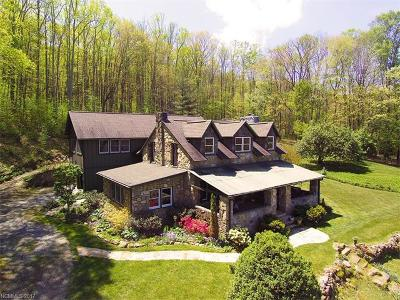 Waynesville Single Family Home For Sale: 766 Saunook Road