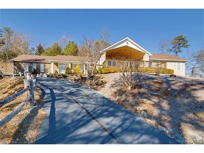 Brevard Single Family Home For Sale: 150 View Road