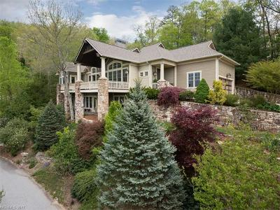 Asheville Single Family Home Under Contract-Show: 7 Dianthus Drive