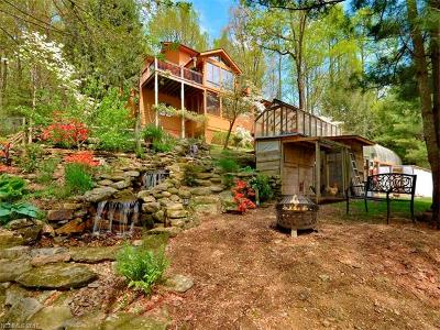 Hendersonville Single Family Home For Sale: 1564 Indian Cave Road