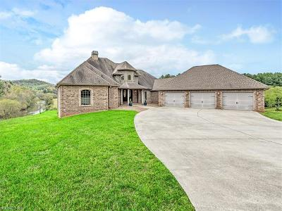 Etowah Single Family Home For Sale: 435 Eade Road