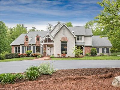 Hendersonville Single Family Home For Sale: 19 Excalibur Court