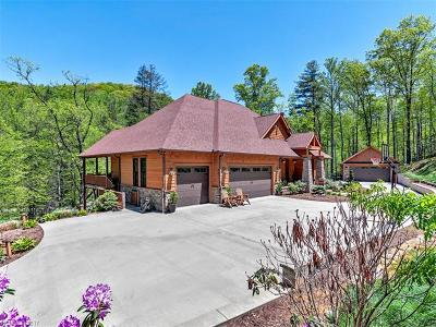 Asheville Single Family Home For Sale: 806 Merrills Cove Road
