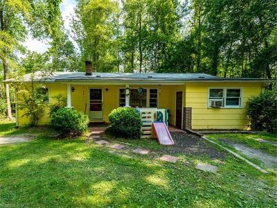 Hendersonville Single Family Home For Sale: 155 Glenwood Road