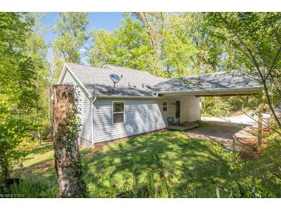 Lake Toxaway Single Family Home For Sale: 164 Horseplay Lane