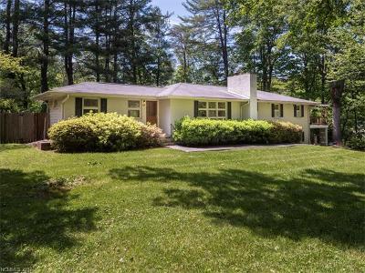 Asheville Single Family Home For Sale: 117 Red Oak Road