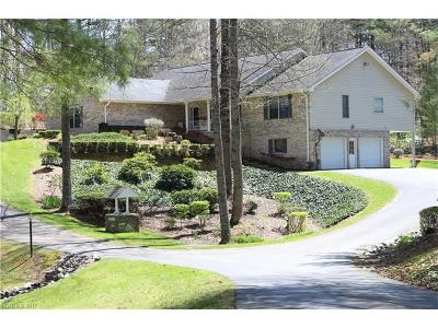 Mills River Single Family Home For Sale: 3391 Butler Bridge Road