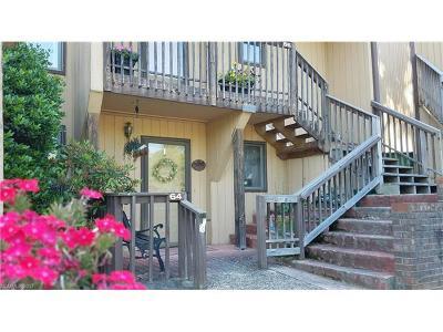Asheville Condo/Townhouse For Sale: 64 Pebble Creek Drive #F-4
