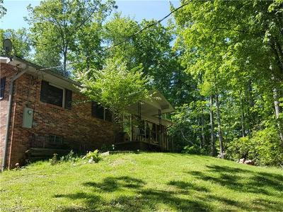 Hendersonville Single Family Home For Sale: 223 Holiday Drive
