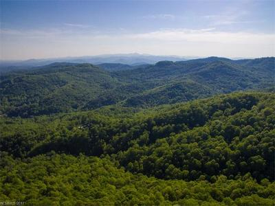 Asheville NC Residential Lots & Land For Sale: $4,999,999
