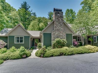 Hendersonville Single Family Home For Sale: 35 Prickly Briar Road