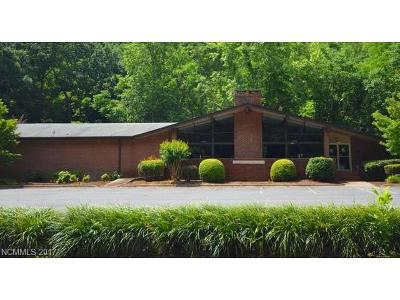 Tryon Commercial For Sale: 2969 Us Hwy 176 Highway