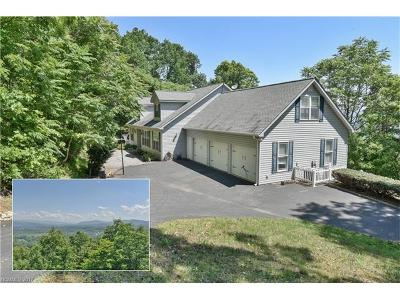 Asheville Single Family Home For Sale: 73 Gaston Mountain Road
