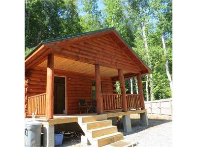 Single Family Home For Sale: 576 Dark Ridge Road