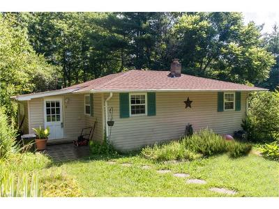 Weaverville Single Family Home For Sale: 5 Ray Road