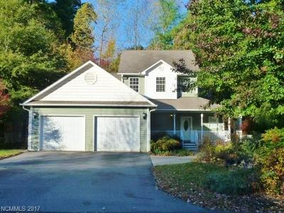 Asheville Single Family Home For Sale: 21 Village Creek Drive
