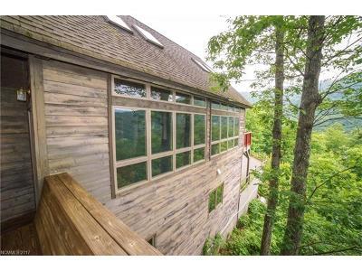 Black Mountain Single Family Home For Sale: 12 Lake Wood Avenue