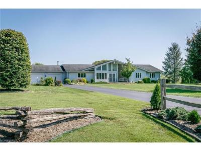 Mills River Single Family Home For Sale: 71 Banner Farm Road