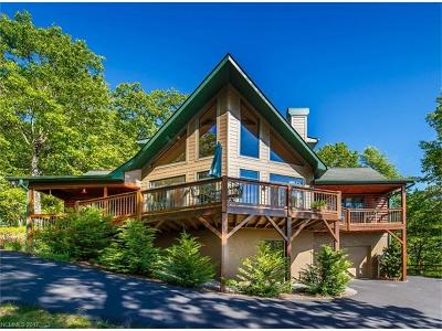Transylvania County Single Family Home Under Contract-Show: 263 Tlvdatsi Drive