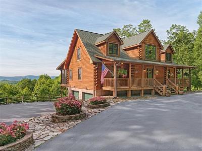 Hendersonville Single Family Home For Sale: 175 Springhead Trail