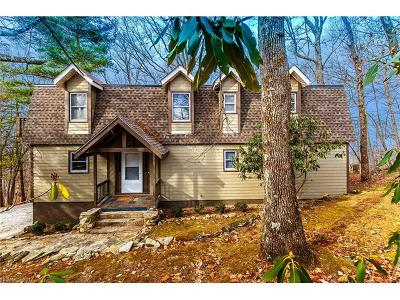 Brevard Single Family Home For Sale: 16 Costigan Road