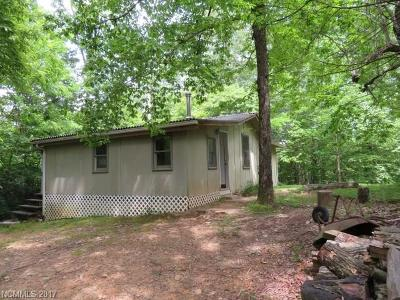 Transylvania County Single Family Home For Sale: 165 Old Transylvania Turnpike