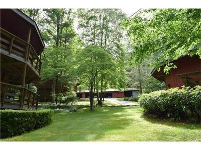 Transylvania County Single Family Home For Sale: 64 White Birch Lane