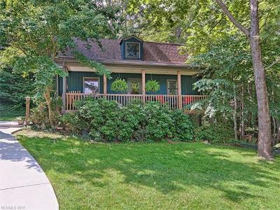 Black Mountain Single Family Home For Sale: 4 Last Resort Road